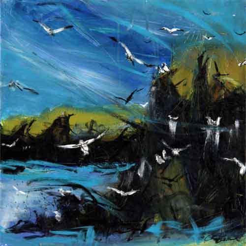 Mågernes leg ud for Mykiness - Færøerne