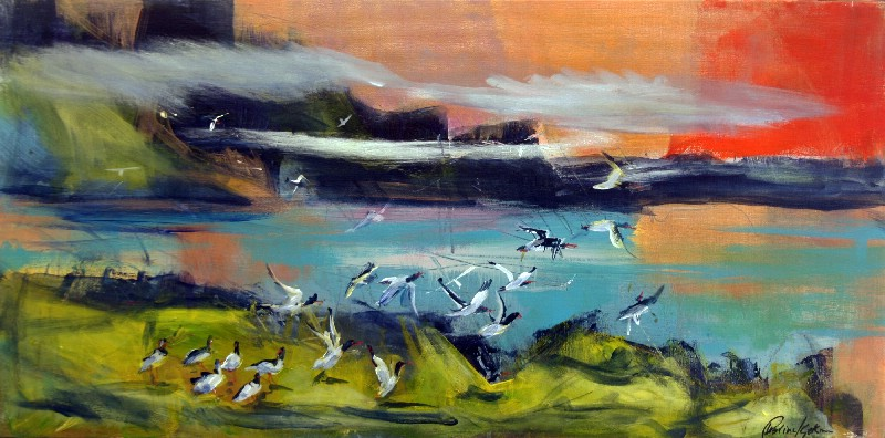 Fuglefjeld Færøerne I
