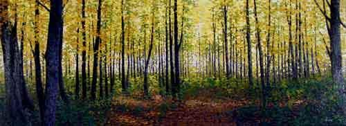 I skovens stille dybe ro I