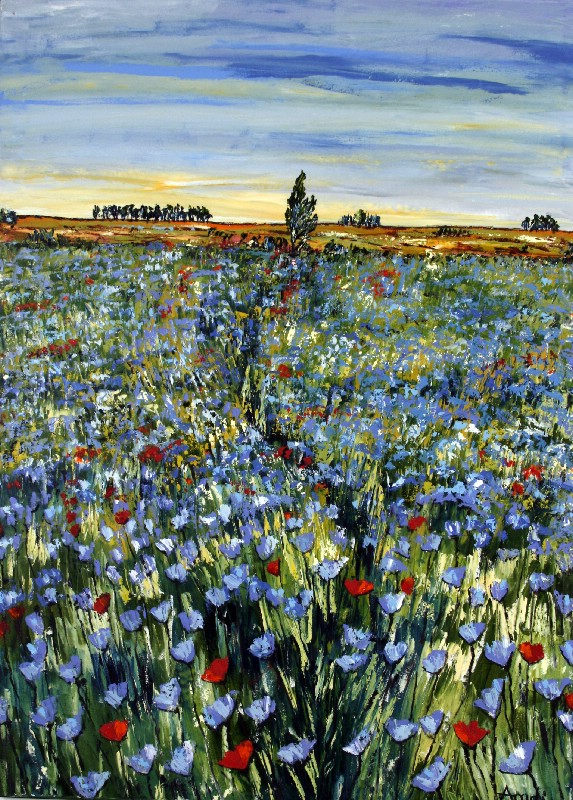 Field With Cornflowers - Provence